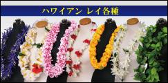 フラダンス用ハワイアン・レイ各種